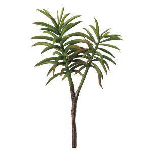 《 造花 グリーン 多肉植物 》Asca/アスカ サッカレンテン グリーン y-hanabishi