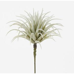 《 造花 グリーン 多肉植物 》Asca/アスカ ティランドシア y-hanabishi 02