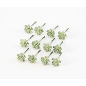 《 造花 グリーン 多肉植物 》Asca/アスカ ミニサッカレンテン(1袋12本入) フロストグリ-ン y-hanabishi