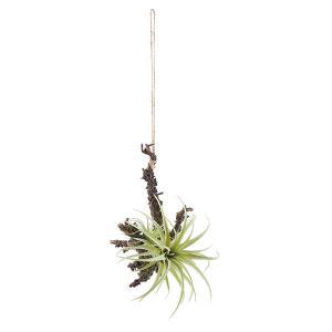 《 造花 グリーン 多肉植物 》Asca/アスカ ハンギングティランドシア グリ-ン|y-hanabishi