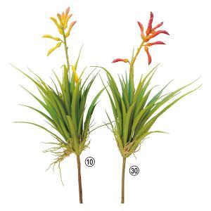 《 造花 グリーン 多肉植物 》Asca/アスカ ティランドシア|y-hanabishi
