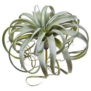 《 造花 グリーン 多肉植物 》Asca/アスカ キセログラフィカ グレイグリーン|y-hanabishi