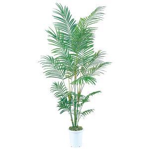 《 造花 グリーン  観葉植物 》Asca/アスカ 【メーカー直送品】 アレカヤシ(※鉢・モスはついておりません)《代引不可・他商品との同梱不可》 グリーン y-hanabishi