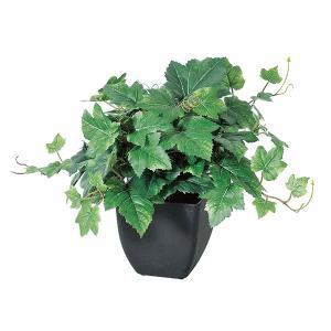 《 造花 グリーン  観葉植物 》Asca/アスカ グレープリーフブッシュ (ポット付) グリーン y-hanabishi