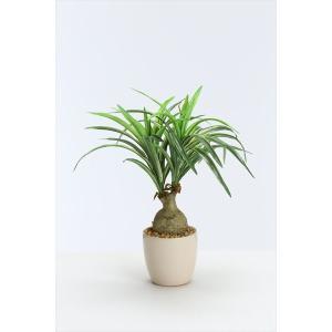 《 造花 グリーン  観葉植物 》花びし/ハナビシ ミニノリナポット グリーン y-hanabishi