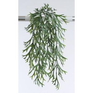 《 造花 グリーン 多肉植物 》花びし/ハナビシ スタッグホーンバイン ライト/グリーン|y-hanabishi