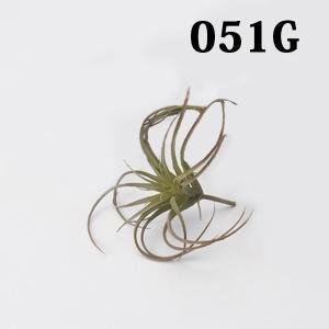 《 造花 グリーン 多肉植物 》☆即日出荷☆アスカ/アスカ(ソクジツ) エアプランツ(1本) グリーンレッド|y-hanabishi