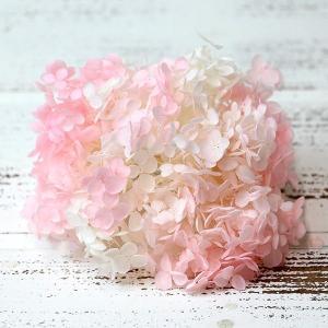 ハーバリウムにアロマワックスサシェに! 小粒の花びらが使いやすいアナベルの さくらのようなピンクと白...