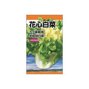 ニチノウのタネ 花心白菜 日本農産種苗 4960599204905 1セット(5袋入)(直送品)