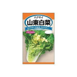 ニチノウのタネ 山東白菜 日本農産種苗 4960599204301 1セット(5袋入)(直送品)