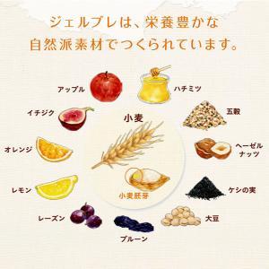 Gerble 全粒粉ビスケット 5枚5袋入 栄養補助食品|y-lohaco|04