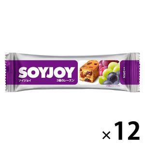 SOYJOY(ソイジョイ) 3種のレーズン 12本 大塚製薬 栄養補助食品|y-lohaco