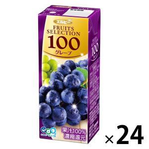 アウトレットエルビー Fruits Selection グレープ 2031 1箱(200ml×24本入)|y-lohaco