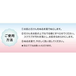 泥炭石 ボディスクラブ石鹸 100g ペリカン石鹸|y-lohaco|08