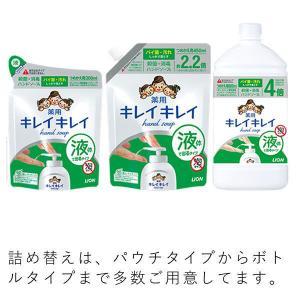 キレイキレイ 薬用液体ハンドソープ 詰替800ml 液体タイプ ライオン|y-lohaco|05