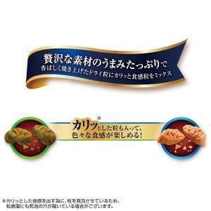 銀のスプーン 三ツ星グルメ 猫用お魚レシピ4種のアソート 200g(20g×10袋) 3個 国産 ユニ・チャーム y-lohaco 03