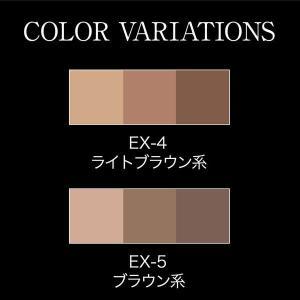 KATE ザイニングアイブロウ ライトブラウン  2.2g y-lohaco 03