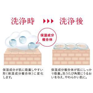 ハダカラ(hadakara)ボディソープ フローラルブーケの香り 詰め替え 超特大 1080ml ライオン|y-lohaco|03