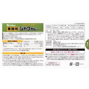 ハウス食品 業務用ジャワカレー 1kg 1個|y-lohaco|02