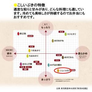 精白米新潟県産こしいぶき 5kg 平成30年産|y-lohaco|04