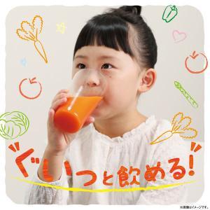 野菜ジュース伊藤園 充実野菜 緑黄色野菜ミックス 930g 1箱(12本入)|y-lohaco|05