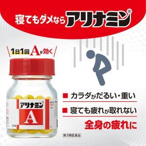 第3類医薬品アリナミンA 270錠 武田コンシューマーヘルスケア|y-lohaco|03