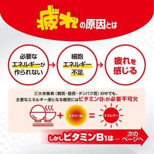 第3類医薬品アリナミンA 270錠 武田コンシューマーヘルスケア|y-lohaco|04