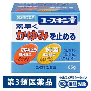 第3類医薬品ユースキンI 65g ユースキン製薬