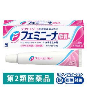 フェミニーナ軟膏S 30g 小林製薬 第2類医薬品