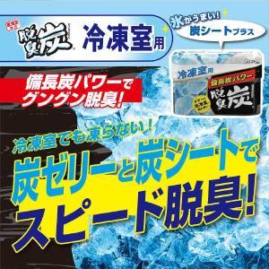 脱臭炭 冷凍室用 1個 エステー|y-lohaco|02