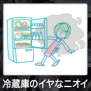 脱臭炭 冷凍室用 1個 エステー|y-lohaco|03
