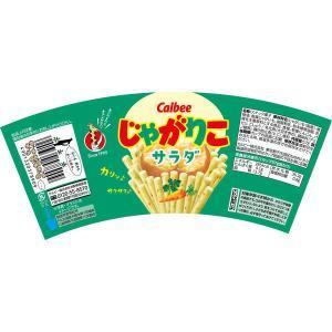 カルビー じゃがりこサラダ 60g 1セット(6個)|y-lohaco|02