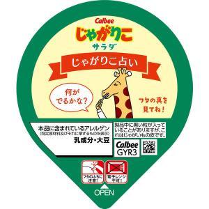 カルビー じゃがりこサラダ 60g 1セット(6個)|y-lohaco|03