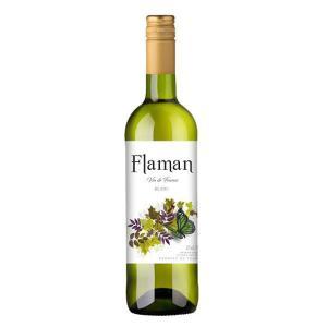 フラマン 白 750ml 1本(フランスワイン)