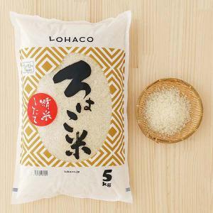 発送日精米 精白米 ろはこ米 新潟県産こしいぶき 5kg 令和元年産 米 お米