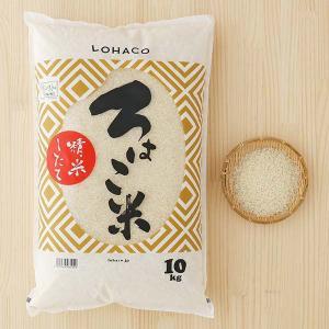 発送日精米 精白米 ろはこ米 新潟県産こしいぶき 10kg 令和元年産