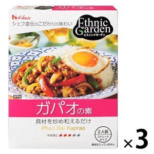 アウトレット ハウス食品 エスニックガーデン ガパオの素 1セット(80g×3個)