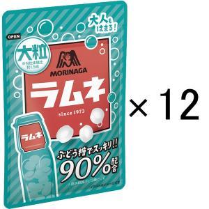 森永製菓 大粒ラムネ 1セット(12本入)