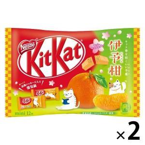ネスレ日本 キットカット ミニ 伊予柑 12枚 2袋 チョコレート