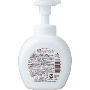 ロハコ限定デザインキレイキレイ泡ハンドソープ シトラスフルーティの香り 本体 500ml大型ボトル ファミリー 泡タイプ ライオン|y-lohaco|02