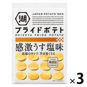SALE 湖池屋 KOIKEYA PRIDE POTATO(湖池屋プライドポテト) 感激うす塩味 3...