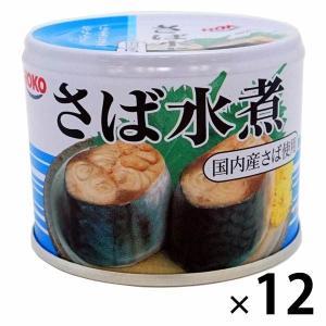 アウトレット 宝幸 さば水煮 1セット(190g×12缶) 国産さば 国内製造