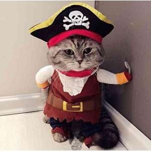 海賊 コスチュームハロウィン パイレーツ 洋服 ネコ 服  ねこ コスプレ 衣装 猫 ngab296 y-mty