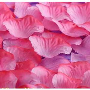 フラワーシャワー ピンクグラデーション 花びら 結婚式 二次会 誕生日 パーティー ウェディング 装飾 ntab029|y-mty