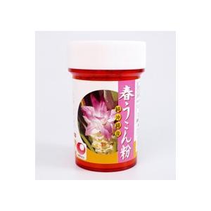 春ウコン粉末 100g 容器入り 沖縄農興|y-sansei-shop