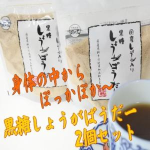 メール便送料無料・代引不可 国産生姜入り黒糖しょうがぱうだー 180g×2個 黒糖本舗垣乃花|y-sansei-shop