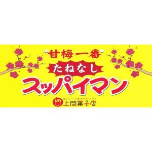 スッパイマンの甘梅一番 たねなし17g 4個までメール便可 y-sansei-shop 02