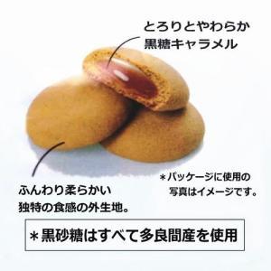 うーじばたけ(袋)10個入 ナンポー|y-sansei-shop|03