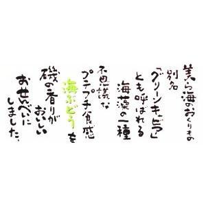 沖縄海ぶどうせんべい ナンポー|y-sansei-shop|03