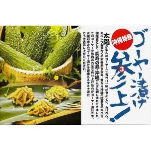ゴーヤー漬 参上!3点セット(キムチ味、しょうゆ味、甘酢味) サンフルーツ y-sansei-shop